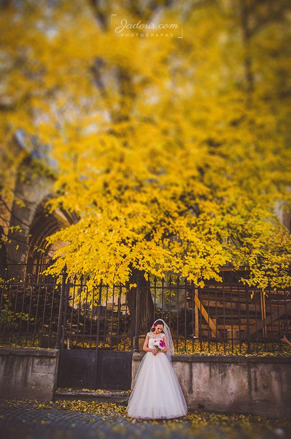 fotograf_nunta_sibiu_79