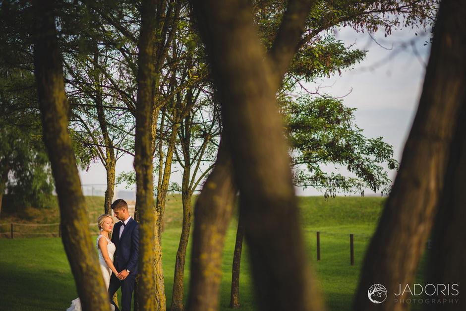 fotografie nunta 71