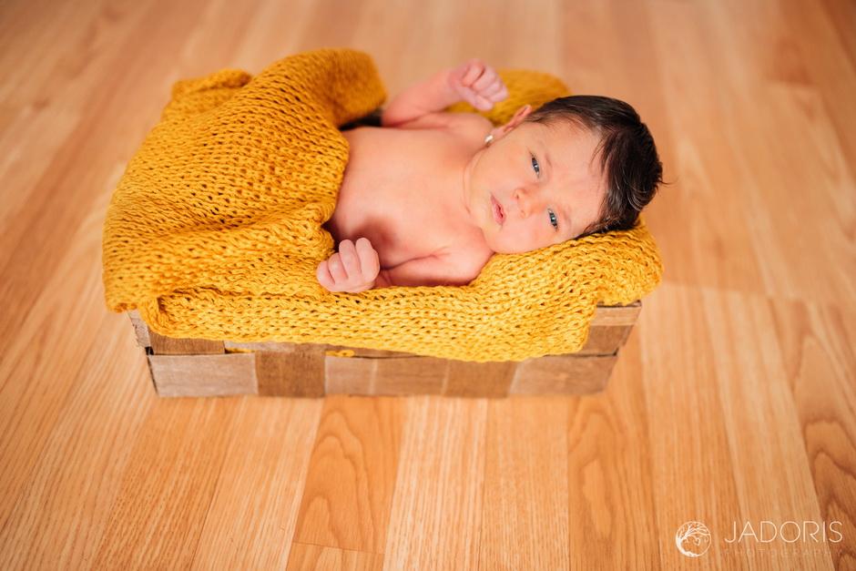 fotografie nou nascuti-1