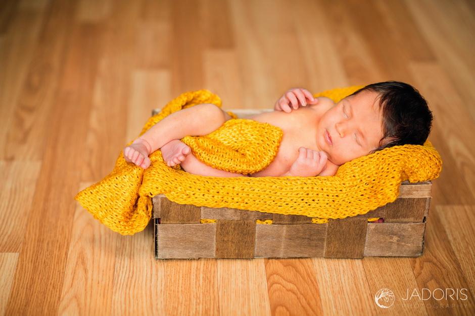 fotografie nou nascuti-5